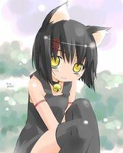 Neko-blackhair
