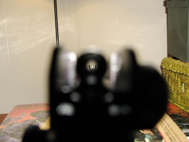 File:AR15 Sight Picture.jpg