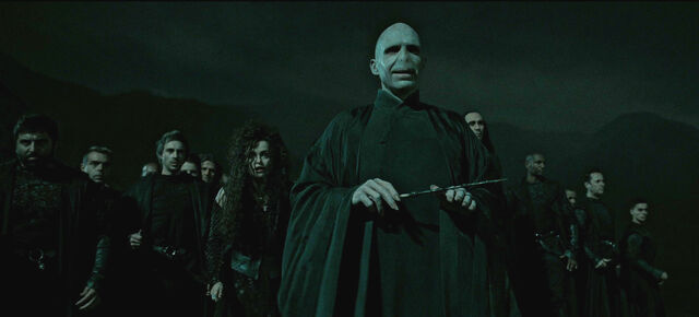 File:Lord Voldemort & the Death Eaters.jpg