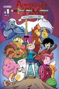 Fionna and Cake issue 1 cover A