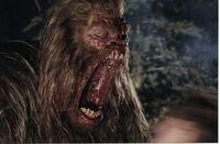 Bigfoot's Mouth