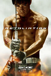 Storm shadow in relation poster