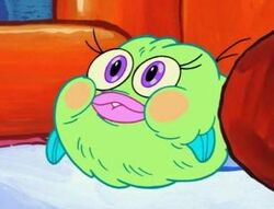Cute Puffy Fluffy