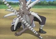 Kimimaro Cursed Seal Lv2