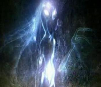 File:Alien (Masters of Horror).jpg