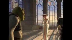 Shrek fourteenth