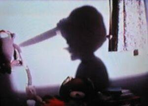 Pinnochio's shadow
