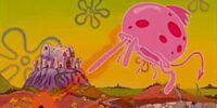 Dragon Jellyfish