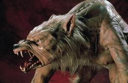 Ginger snaps werewolf