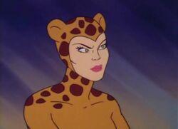 Cheetah Super Friends