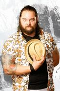 Bray wyatt02