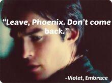 Phoenix.Violet2