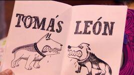 LomasDogs