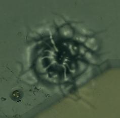 File:Welder Bullet Hole.png