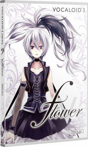 File:Flowerboxy.jpg