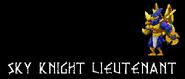Sky Knight Lieutenant