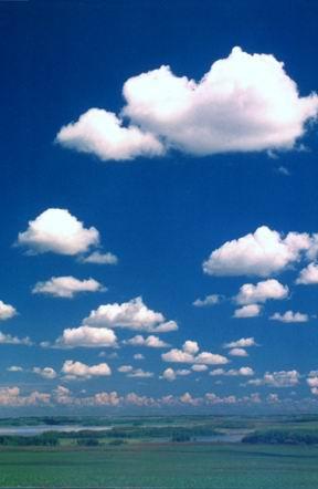 Fichier:Cumulus de beau temps1.jpg