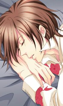 Akio Tsubaki - Season of Love (2)