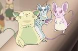 Mice Secrets