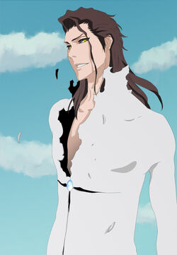 Aizen s new transformation by wako88