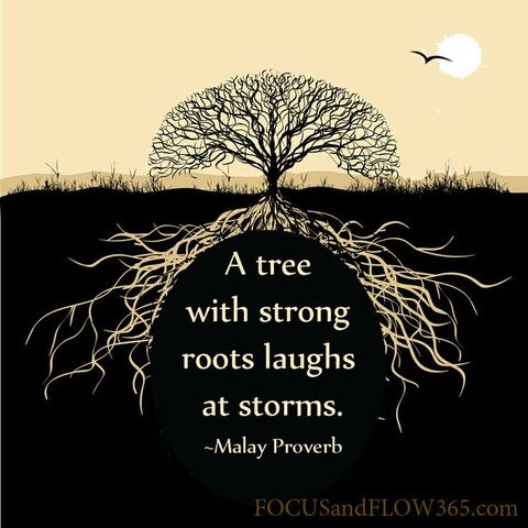 File:A022956c11046895fc2684ae11988c0e--roots-quotes-wise-quotes.jpg