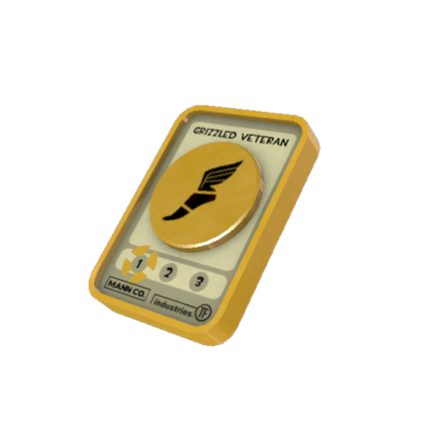 File:Tf2item grizzled veteran.png