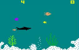 Shark Shark Screen