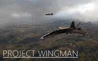 Project Wingman cover