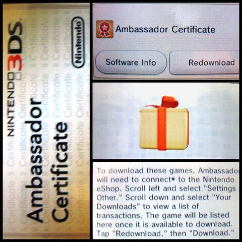 File:AmbASSador Certificate.jpg