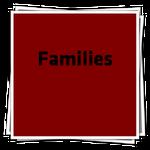 FamiliesIcon