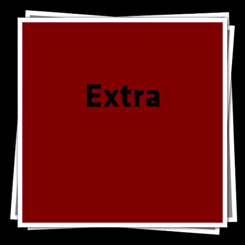 File:ExtraIcon.png