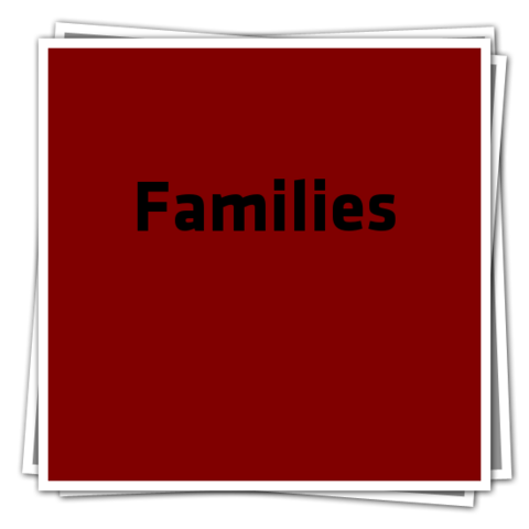 File:FamiliesIcon.png