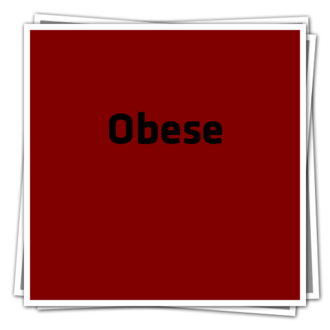 File:ObeseIcon.png