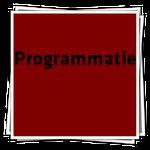 ProgrammatieIcon
