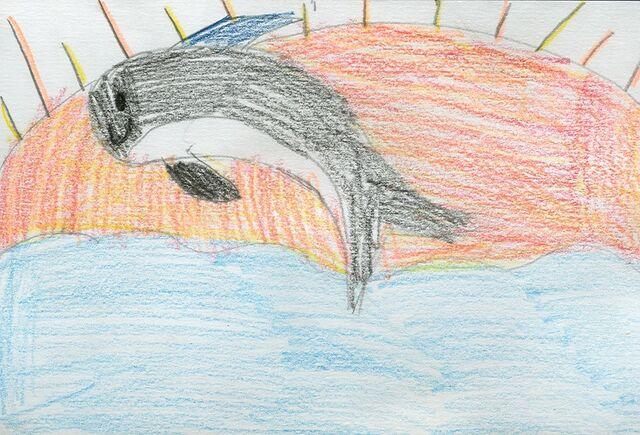 File:Emily Ing Killer whale diving.jpg