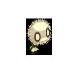 Downy Dandelion