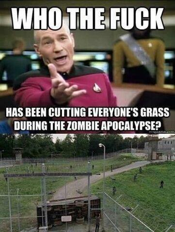 File:Cutting-grass.jpg
