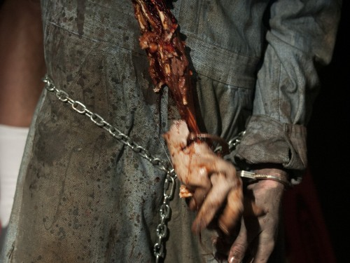 File:The-walking-dead-season-3-arm-500x375.jpg