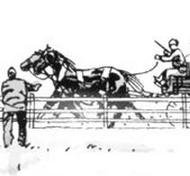 File:Horse 7 Issue 19.JPG