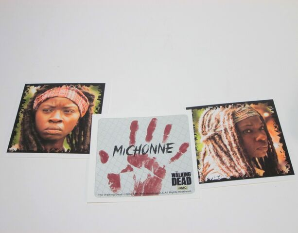 File:Michonne Character Cards 2.jpg