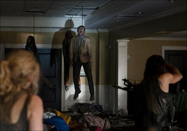 File:Hanging walkers in Still!.jpg