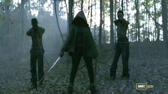 File:Michonne-Walking-Dead-Danai-Gurira-1024x576.jpg