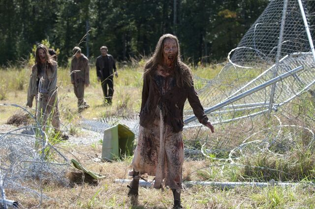 File:Fence Walkers Claimed.jpg