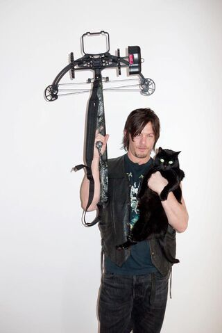 File:Reedus and Cat.jpg