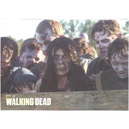 The Walking Dead - Sticker (Season 2) - S8