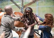 Michonne VS Walker