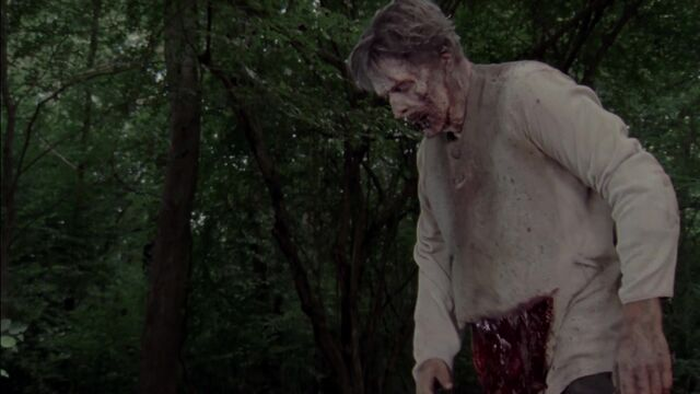 File:The Walking Dead S03E06 1150.jpg