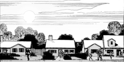 Issue 72 Houses