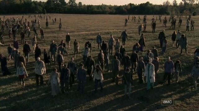File:The Walking Dead S02E13 HDTV x264-ASAP mp4 000112946.jpg