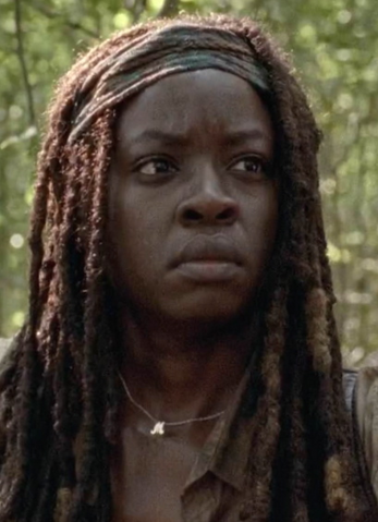 File:Michonne Strangers.png